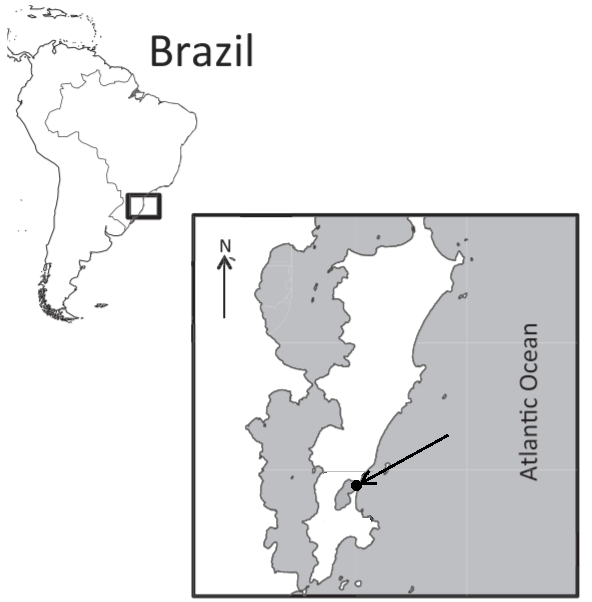 Florianopolis map