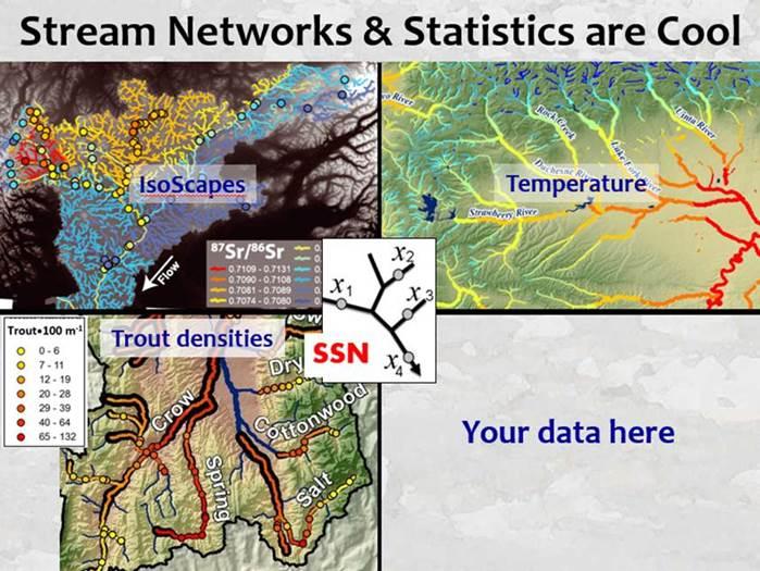 SSN image
